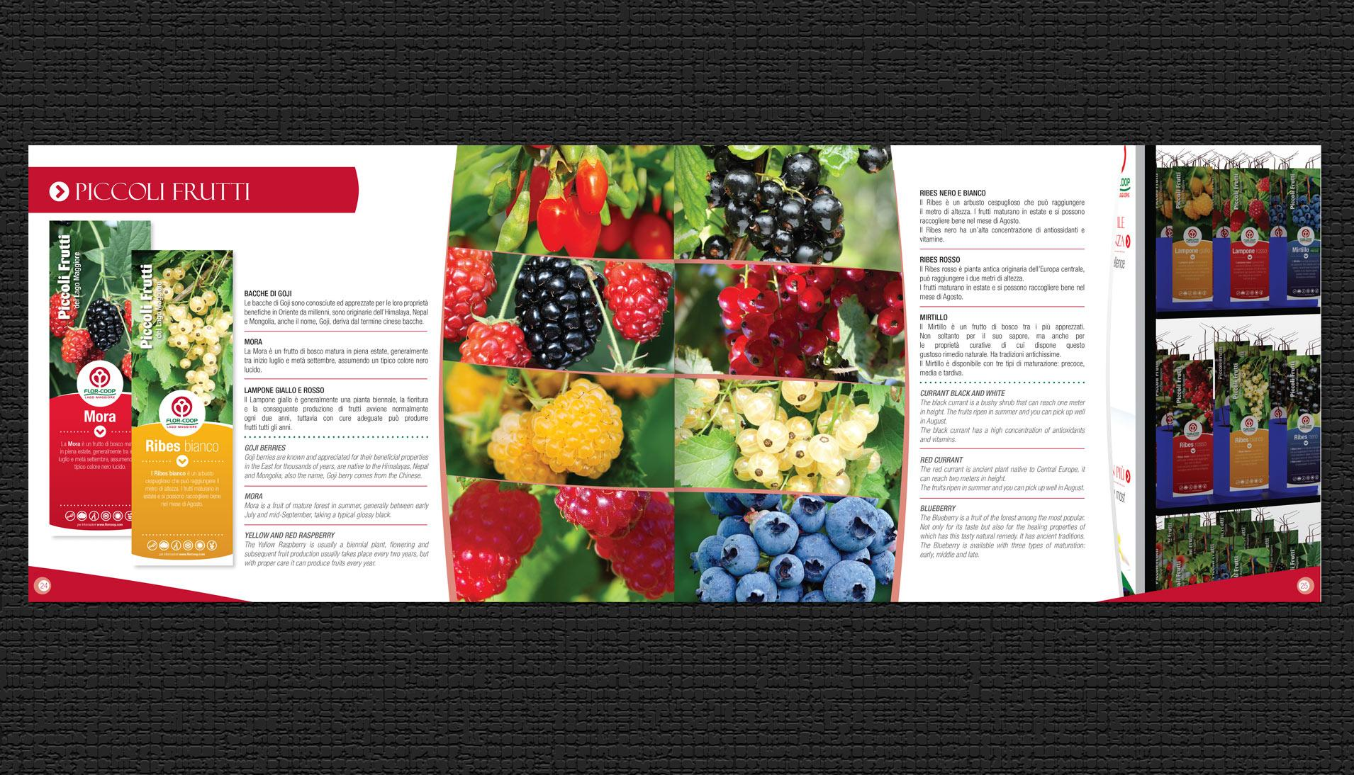 WarningStudioComunicazione florcoop brochure 04